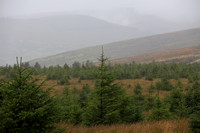 2013 Wicklow Mountains